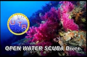 Open water corso sub